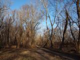 The vanishing trail