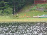 Flamingos (!) on Crystal Lake