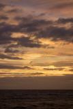sunset #16