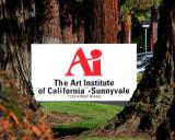 Art Institutes California - Silicon Valley - Graduates