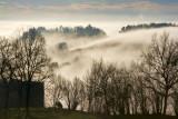 La lumière du brouillard