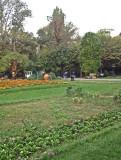 IMG_0436_gardenpark
