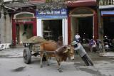 Ninh Binh, hard to drive...