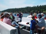 OUR FELLOW WHALE WATCHERS WERE EXCITED TO SEE THE FIRST FIN