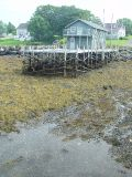 AT LOW TIDE THE WHARFS SHOW THEIR SKELETON