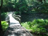 WE LOVED THIS LITTLE FOOT BRIDGE ON OUR WALK ALONG THE RIVER