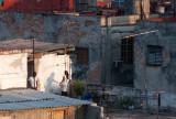 Early Shadow Havana, Cuba - May 2012