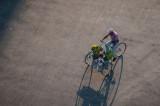 Flowers Havana, Cuba - May 2012
