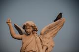 Wings Havana, Cuba - May 2012