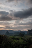 -The Valley- Cuba - May, 2012