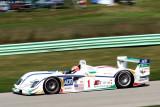 MARCO WERNER ADT Champion Racing