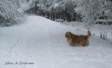 Up to his snowballs