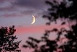 Moonrise 0289
