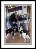 Katarina preparing a plate of Coffee bread...with an audience!...