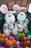 Bunnies For Stephanie