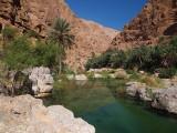 Wadi Shab & Wadi Tiwi