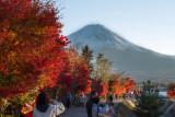 Autumn Mount Fuji