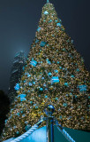 The Tiffany X'mas Tree