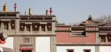 KUMBUN TEMPLE QINGHAI CHINA 5.jpg