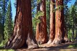 Yosemite National Park, September, 2012