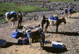 Trekking in the Atlas Mountains - 1996