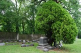 Olin Family Monument