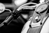 Harley7.jpg