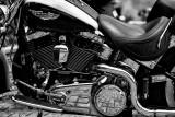 Harley8.jpg