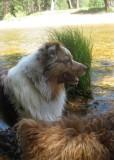 Skye Lea Enjoying a Summer Day