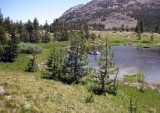 A Sight that's Available Near Tioga Pass for Just a Short Hike