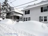 Snow Buried Cars