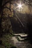 Steep  steps  at  night.