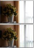 Dans l'image du dessus le D-LA est désactivé. Mode de mesure matriciel. La mesure AF est faite sur la fleur. La dynamique de la scène est très élevée, de toutes manières impossible à faire enregistrer correctement par le capteur. La matricielle a fait le maximum en prenant en compte le fait que la mesure AF ayant été faite sur la fleur elle considère que c'est le sujet principal. elle va donc légèrement favoriser ce sujet. Résultat sans D-LA le bouquet reste sombre et le rideau est cramé, la matricielle a fait au mieux possible.  Avec D-LA auto activé et mêmes paramètres, Images RAW ouvertes dans NX2, le rideau montre maintenant plus de détails et le bouquet est éclairci.  Un Jpeg ouvert dans n'importe quel logiciel aurait donné le même résultat bien sûr. En revanche le RAW ouvert dans un logiciel autre que NX2 n'aurait pas bénéficié automatiquement de la correction des basses lumières (en fonction des réglage de ce logiciel) mais aurait bénéficié de la correction d'exposition des hautes lumières.  Cette démo n'est pas destinée à montrer que le D-LA auto peut tout sauver, mais à montrer son principe d'action qui consiste à optimiser finement  la mesure matricielle de manière totalement automatique.