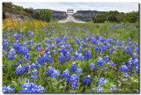 360 Bridge ( Pennybacker Bridge ) Images