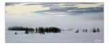 Snow Fields4.jpg