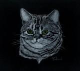 Ernie - charcoal, 9 x 12