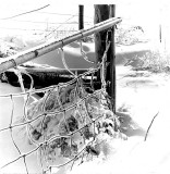 Ice Storm, Iowa 1973