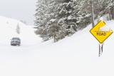 Yellowstone NP in Winter - 2013