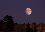 Moon rising over sierras copy.jpg