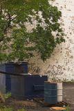 Tree Garbage Graffiti