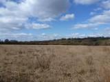 Dunvant walk - 12 Mar 2013