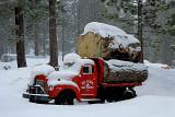 ED Cook Tree Service