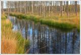 Nature & Rural life  2011