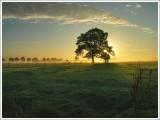 Nature & Rural life   2004