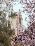 Sainte-Marie-aux-Mines