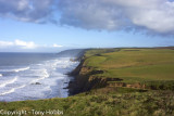 Bude to Damehole Point with Colin Ibbotson, camp 6.