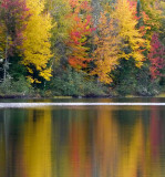 New England's Reflections