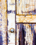 Kauai Door
