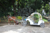 One of several types of buggies available for hire at the park.