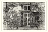 Window Farmhouse Oevel (Bokrijk - Belgium)